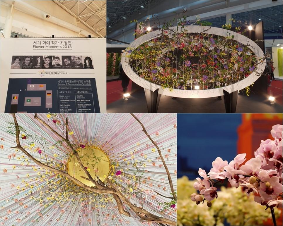 Lễ hội hoa quốc tế Goyang 2018