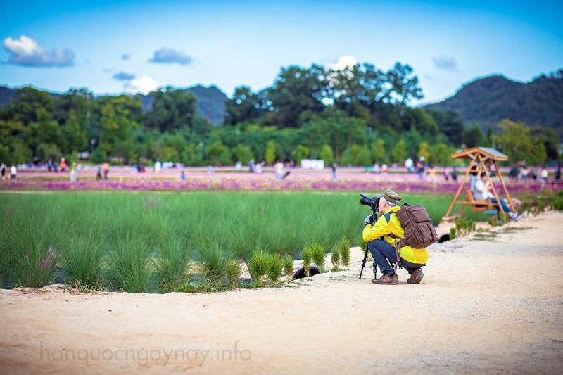 Công viên Nari ở Yangju