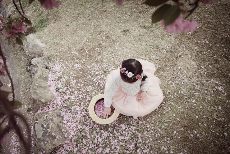 hanquocngaynay.info - Binh yen cung hoa anh dao kep o Bulguksa