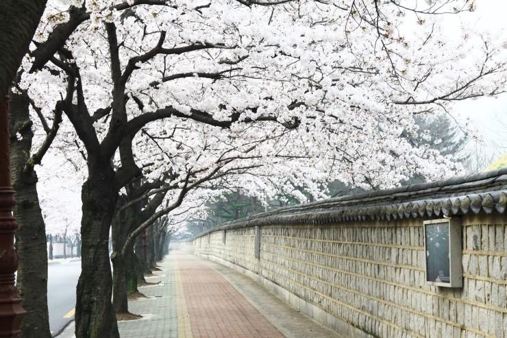 20150326_Gyeongju_1