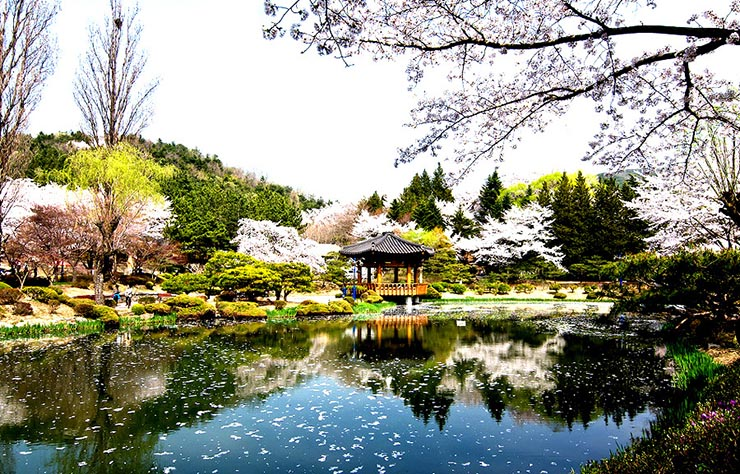 20150403_Gyeongju_Bomun_Pavilion_1_740