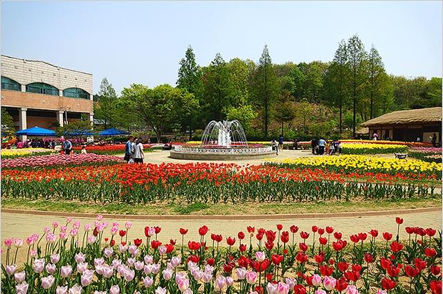 hanquocngaynay.info_Bucheon_1