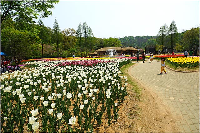 hanquocngaynay.info_Bucheon_2