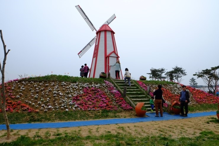 hanquocngaynay.info_Taean2015_10
