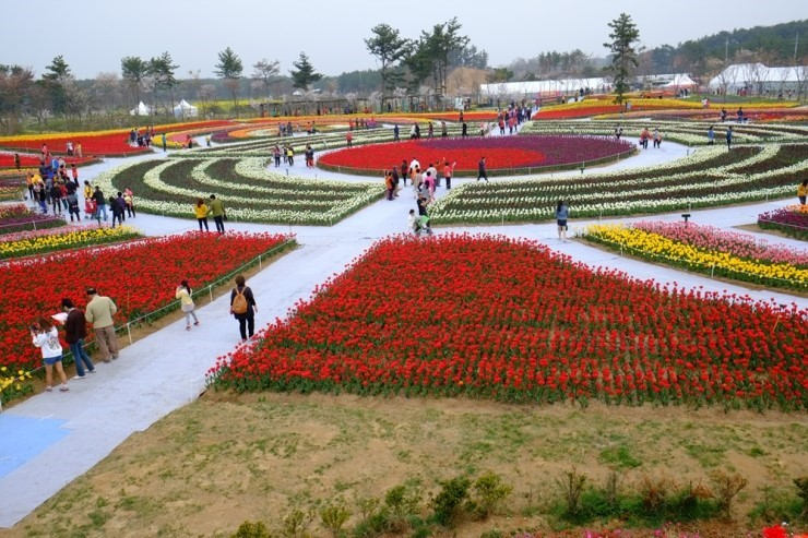 hanquocngaynay.info_Taean2015_3