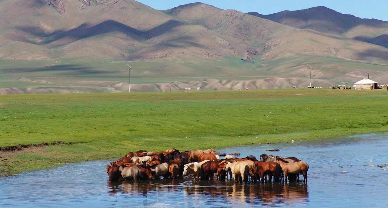 Du lịch Mông Cổ từ Hàn Quốc